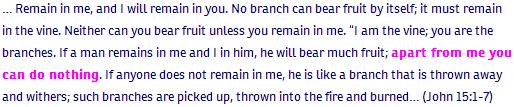 1_John ch 15 verse 1-7