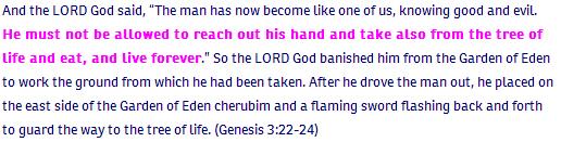 3_Genesis ch 3 verse 22