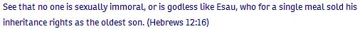 Hebrews ch 12 verse 16