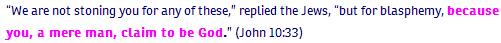 John ch 10 verse 33