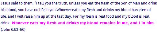 John ch 6 verse 53-56